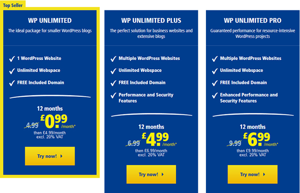 1&1 WordPress hosting package