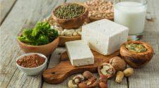 Vegetarian Protein Sources