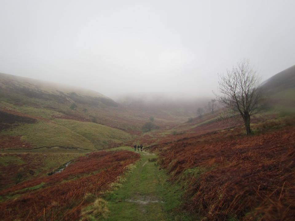 Hardmoors White Horse Trail Marathon Bleak